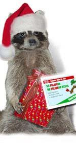 darilni kuponi za božič